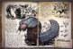 Ark: Survival Evolved Spotlight: Arthropluera – Gebt Acht vor dem giftigen Krabbler!