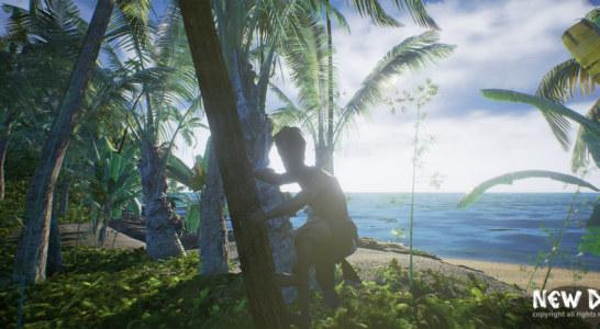 New Dawn – Interview mit Entwickler E-Visualsoft