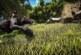 Ark: Survival Evolved – PC Patch 248: Prozedurale Karten, neue Kreaturen und Mehr!