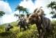 Ark: Survival Evolved Dossier – Pachyrhinosaurus … die laufende Chemiekeule!