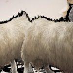 Ark: Survival Evolved Dossier – Zu den Steam Awards lässt der Entwickler das Schaf los!